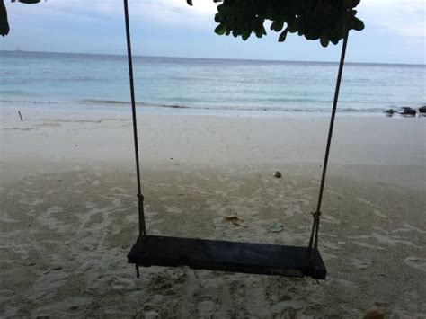 swing on the beach swing on the beach picture of serendipity beach resort