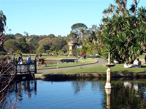 royal botanic gardens sydney restaurant 5 places that you must visit during your sydney