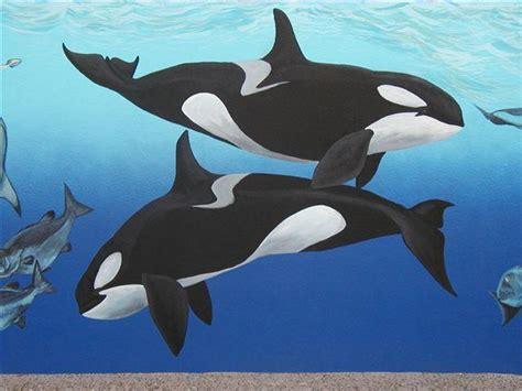 imagenes animales acuaticos lista animales marinos