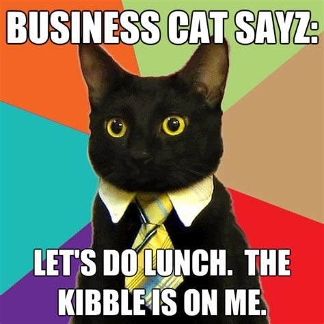 business cat sayz lets do lunch the kibble is on me