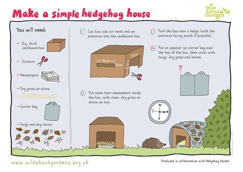 how do you make a house the last hedgehog in avon avon wildlife trust