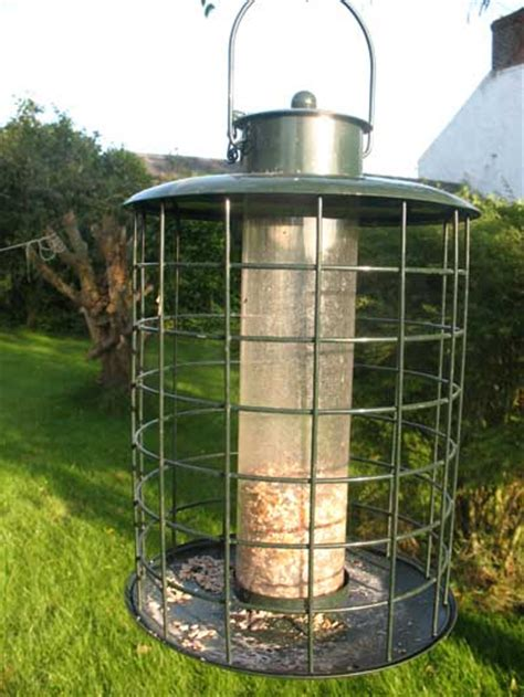 Purchase Bird Feeders It Pays To Buy A Strong Bird Feeder Bird Table News