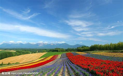 Landscape Park Definition 富良野的彩色田园摄影图 自然风景 自然景观 摄影图库 昵图网nipic