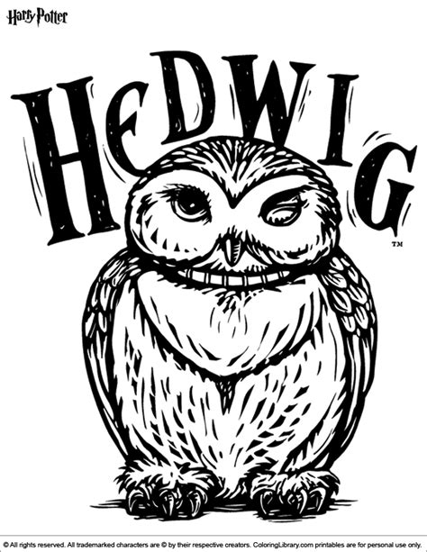 harry potter coloring pages owl harry potter coloring picture