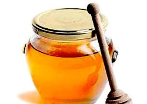 Hilo School Honey 500 Gram beekeeping