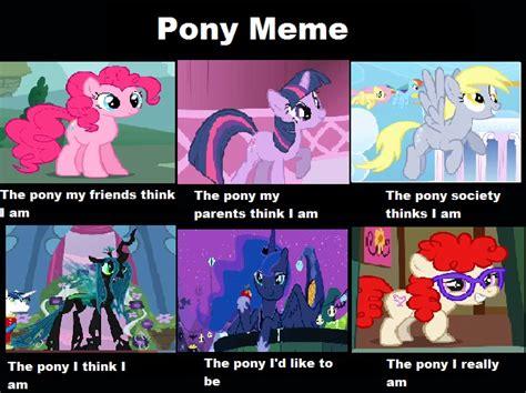 Meme Pony - pony meme by bleedingsoull on deviantart