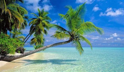 Welcome To Teri At Pretty By Nature by Beaches Thilanka Tours