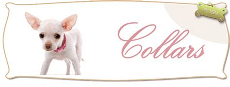 posh puppy boutique collars boutique puppy collars designer collars