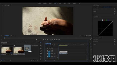 Adobe Premiere Pro Old Film Effect | how to create an old film look effect in adobe premiere