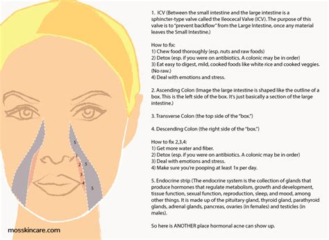 mapping acne mapping for acne the ultimate guide