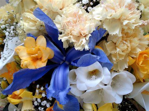 all best picos poze desktop flori buchete de flori poze desktop flori buchete de flori poze imagini desktop