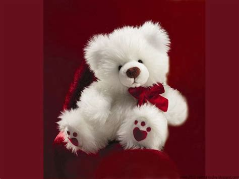 cute hd teddy wallpaper happy teddy day 2016 teddy bear hd wallpapers and quotes