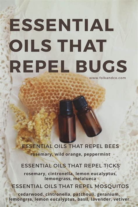 scents that repel bed bugs 25 best ideas about bee repellent on pinterest natural