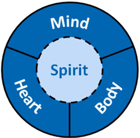 the soul centered goals planner a mind spirit approach to holistically accomplishing your goals books los h 225 bitos de un director de proyectos eficaz projects