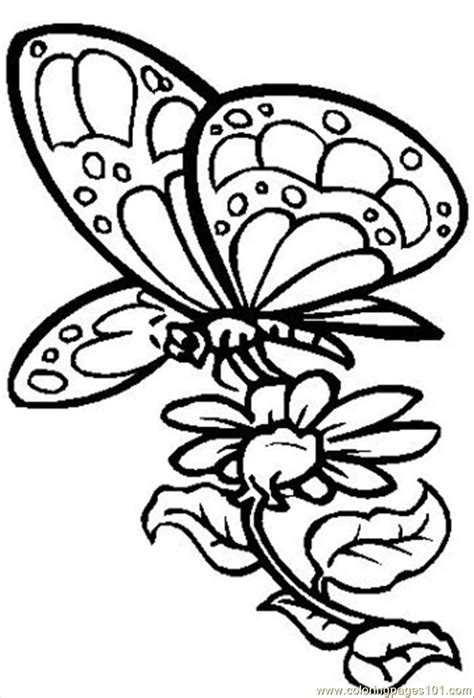 free coloring pictures of flowers and butterflies coloring pages flowers butterflies coloring home