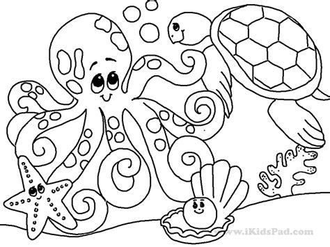 exclusive pictures of ocean animals to color s 1757 unknown