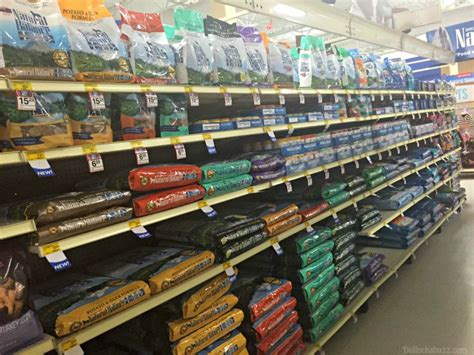 petsmart puppy food balance cat food and food is now at petsmart it s the cat s meow