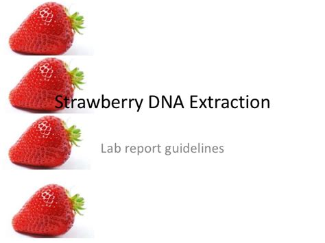 strawberry dna extraction lab worksheet new dna for kids teaching
