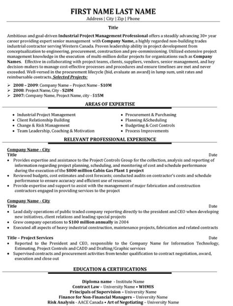 it project coordinator resume samples velvet jobs