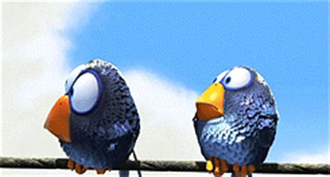 gif wallpaper birds the birds gif find share on giphy