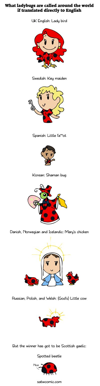 Ladybug World Ladybug Around The World Scandinavia And The World
