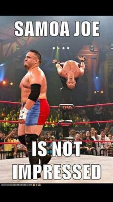 Wwf Meme - wwf meme 28 images wwe trolls of the day july 9 20 of