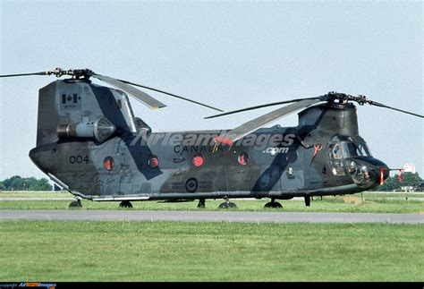 Boeing Vertol CH-147 Chinook - Large Preview ...