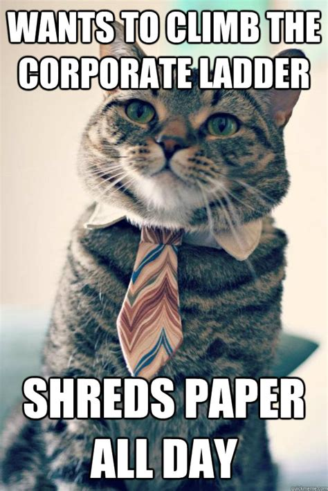 Ladder Meme - wants to climb the corporate ladder shreds paper all day