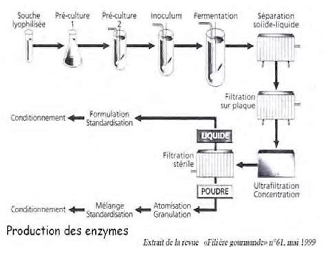 diagramme de fabrication de la farine de blé boulangerie net ensymes 1