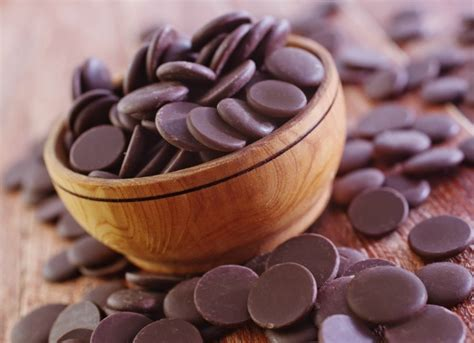 chocolate toxicity chocolate poisoning in cats petmd