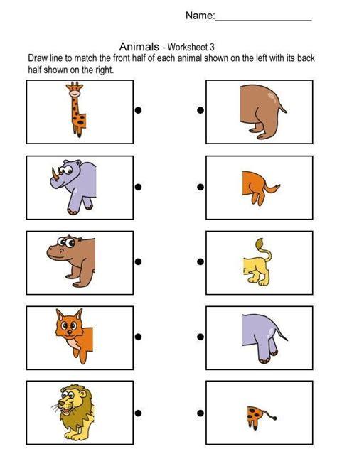 animals body parts printables  preschool  homeschool
