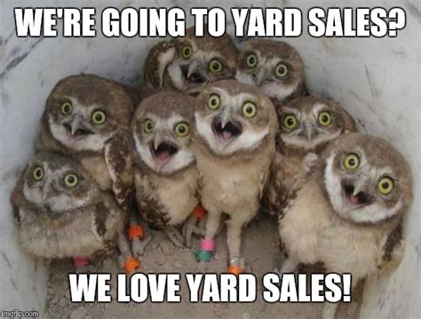 Yard Sale Meme - excited owls imgflip