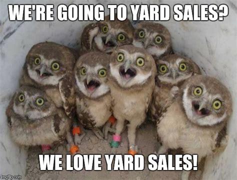 Yard Sale Meme - excited owls imgflip