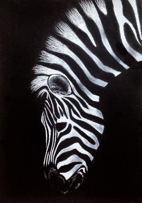 zebra tattoo prices the 25 best zebra drawing ideas on pinterest zebra