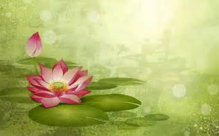 Wallpaper Lotus Flower Design Lotus Flowers Wallpaper 8725