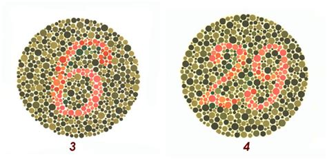 test per vedere se sei esame della vista test sul daltonismo test di ishishara