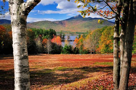 Phone Lookup Nh Mt Chocorua A New Hshire Scenic Photograph By Schoeller