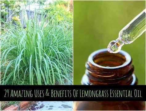 amazing  benefits  lemongrass essential oil