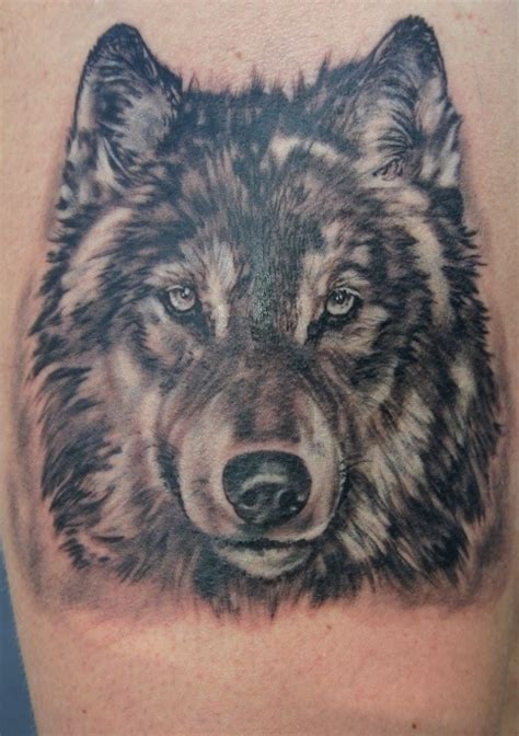 tattoo pictures wolves realistic wolf tattoo design of tattoosdesign of tattoos