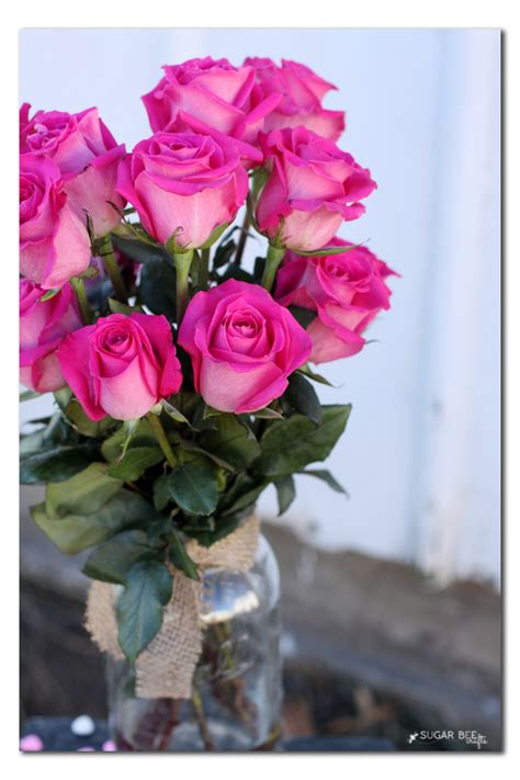 Fresh Flower Delivery by Fresh Flower Delivery Driverlayer Search Engine