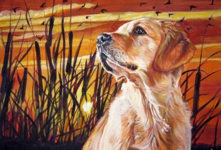 sunset golden retrievers sunset golden retriever wallpapers and images desktop nexus groups