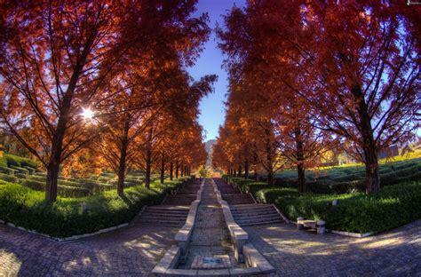 imagenes de otoño en japon scale