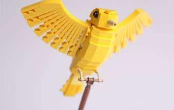 libro the yellow birds avian lego sculptures tropical bird series