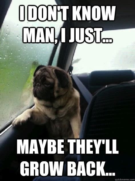 I Don T Know Man Meme - introspective pug memes quickmeme
