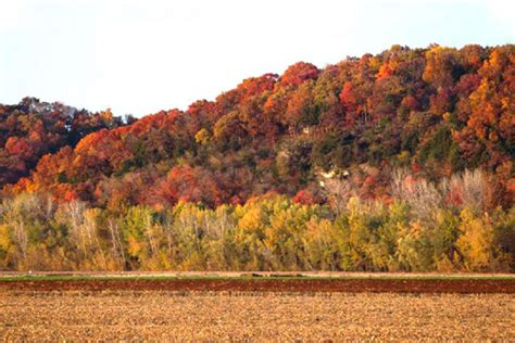 missouri state colors look forward to fall foliage in mid missouri central mo