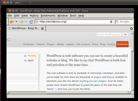 set up x11vnc server ubuntu gnome taking screenshots of all or specific virtual