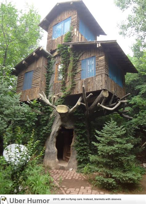 three story tree house funny pictures quotes pics