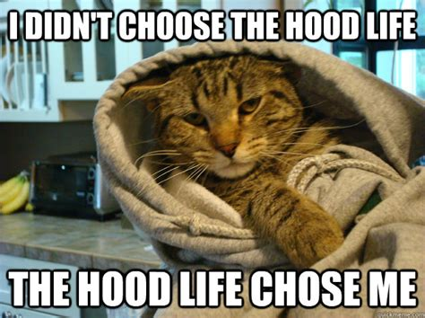 Memes Hood - i didn t choose the hood life the hood life chose me