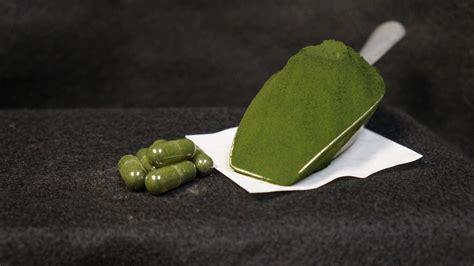 Suplemen Chlorella chlorella supplement powder thyme botanicals