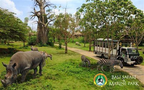 Safari Anak Bali Safari Marine Park bali safari marine park peta lokasi jam buka harga